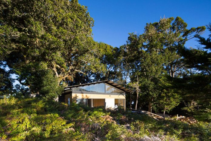 efc-contemporary-cabin-small-forest-oak-trees-designed-void-02