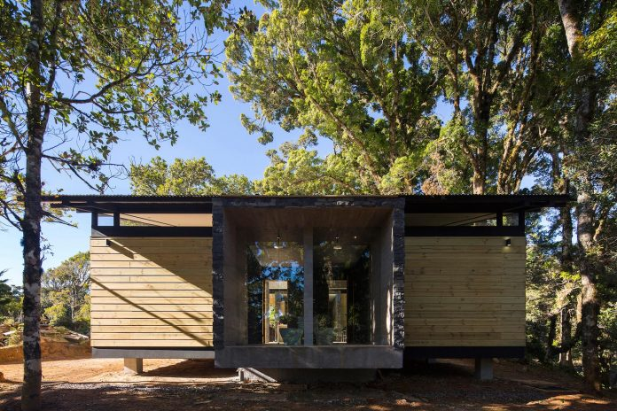 efc-contemporary-cabin-small-forest-oak-trees-designed-void-04
