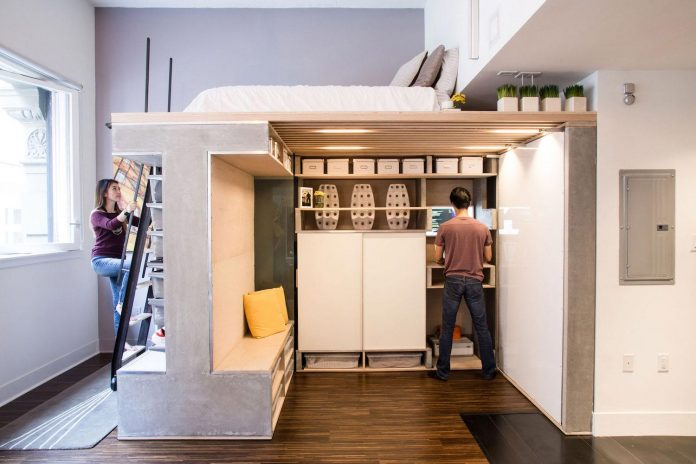 tiny-domino-loft-located-san-francisco-designed-icosa-design-02