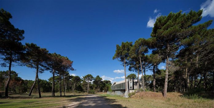 alamos-concrete-house-near-pinamar-buenos-aires-province-estudio-galera-11