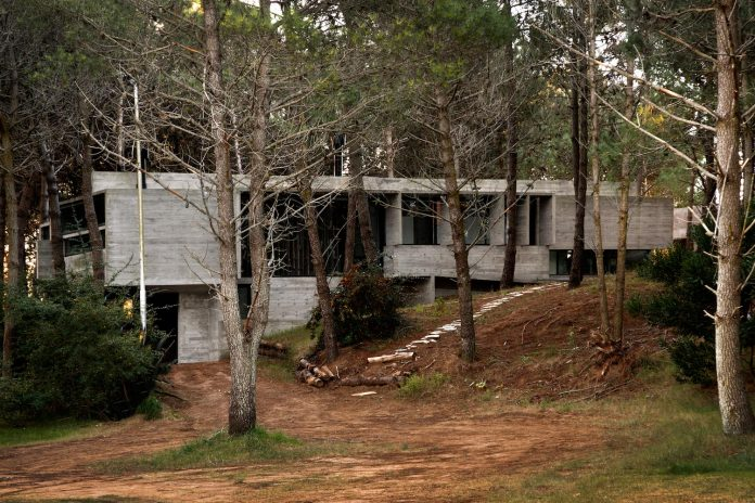 concrete-valeria-house-lush-vegetation-crossed-tall-dunes-designed-luciano-kruk-maria-victoria-besonias-05