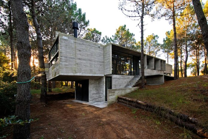 concrete-valeria-house-lush-vegetation-crossed-tall-dunes-designed-luciano-kruk-maria-victoria-besonias-06