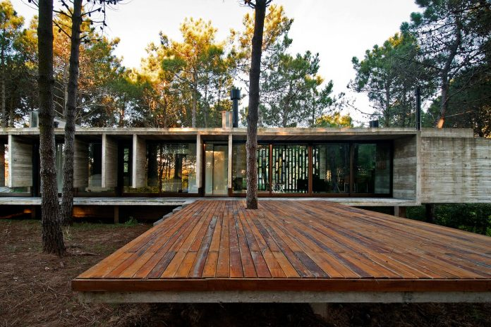 concrete-valeria-house-lush-vegetation-crossed-tall-dunes-designed-luciano-kruk-maria-victoria-besonias-12