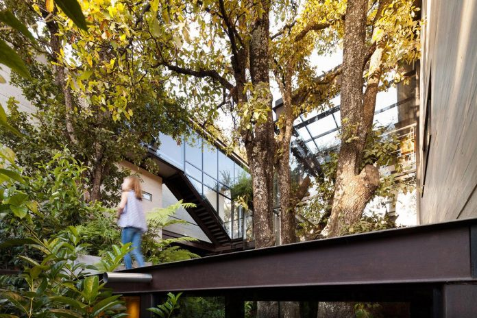 grupoarquitectura-design-tepozcuautla-house-two-volumes-connected-steel-bridges-glass-floors-beyond-forest-07