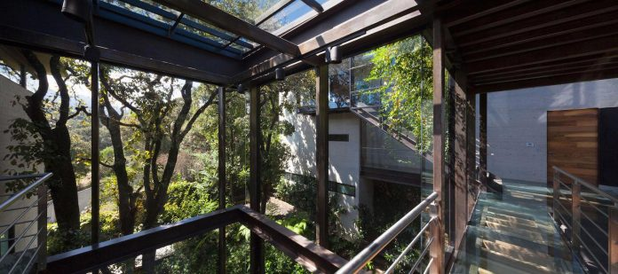 grupoarquitectura-design-tepozcuautla-house-two-volumes-connected-steel-bridges-glass-floors-beyond-forest-11