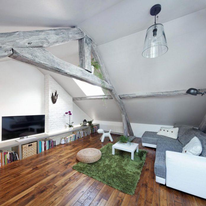 rustic-contemporary-living-roof-loft-ivry-sur-seine-paris-designed-prisca-pellerin-01