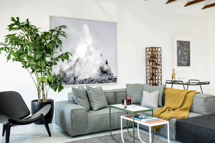 scandinavian-style-apartment-mission-district-san-francisco-geremia-design-02