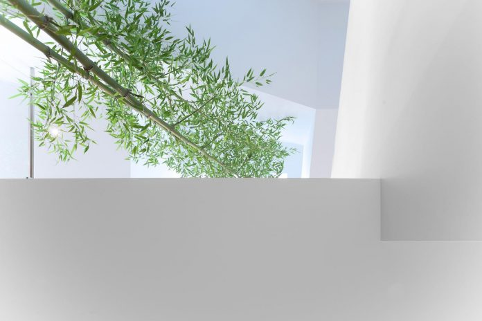 2996-west-11th-residence-punctuated-white-brick-facade-randy-bens-architect-11