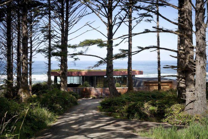 360-house-perched-beach-edge-tree-line-bora-architects-04