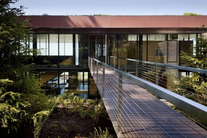 360-house-perched-beach-edge-tree-line-bora-architects-07