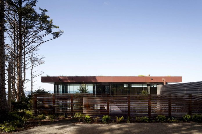 360-house-perched-beach-edge-tree-line-bora-architects-08