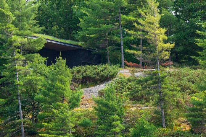 ian-macdonald-design-go-home-bay-cabin-located-ontarios-georgian-bay-archipelago-01