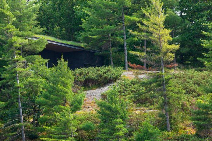 ian-macdonald-design-go-home-bay-cabin-located-ontarios-georgian-bay-archipelago-01