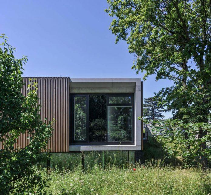 manuela-fernandez-langenegger-designs-flat-concrete-home-nurtingen-germany-03