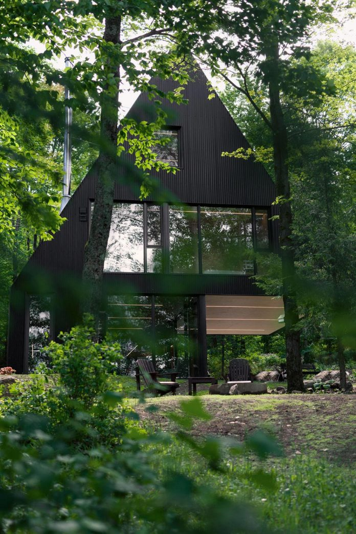 nestled-privacy-hemlock-forest-fahouse-presents-amazing-building-seems-emerge-childrens-story-01