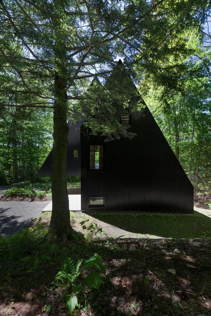nestled-privacy-hemlock-forest-fahouse-presents-amazing-building-seems-emerge-childrens-story-02