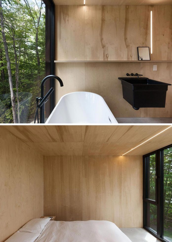 nestled-privacy-hemlock-forest-fahouse-presents-amazing-building-seems-emerge-childrens-story-19