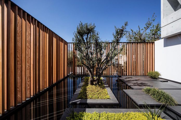 pitsou-kedem-architects-designed-s-house-concrete-home-modern-look-made-clean-lines-04