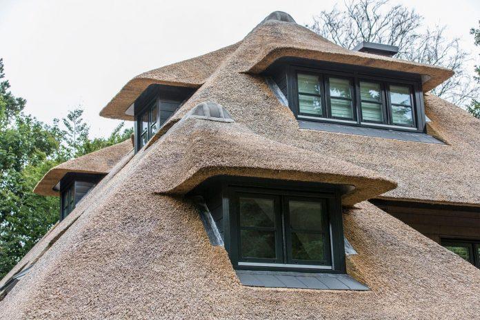 characteristic-villa-forests-around-naarden-netherlands-unique-eco-roof-13