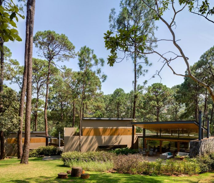 five-houses-project-dream-living-forest-dominated-ancient-pines-lush-vegetation-03