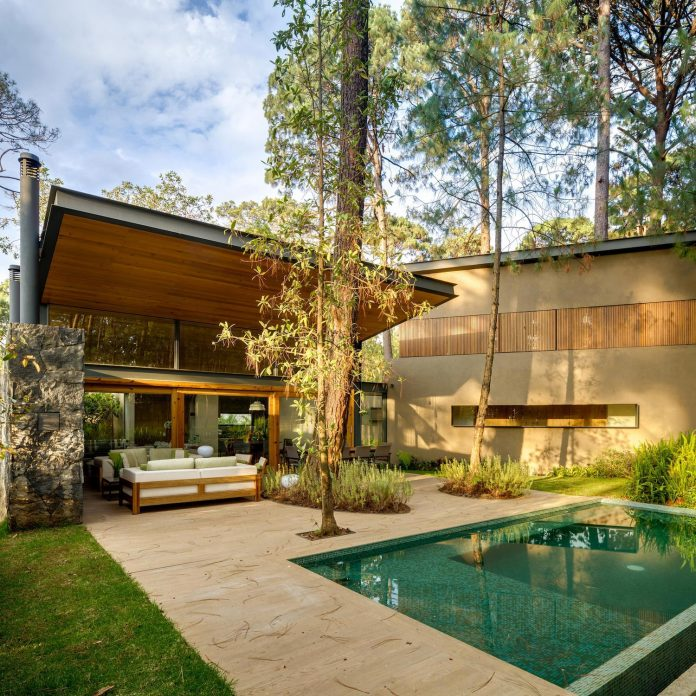 five-houses-project-dream-living-forest-dominated-ancient-pines-lush-vegetation-04