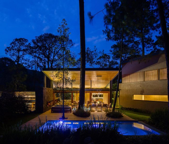five-houses-project-dream-living-forest-dominated-ancient-pines-lush-vegetation-07