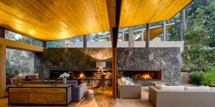 five-houses-project-dream-living-forest-dominated-ancient-pines-lush-vegetation-08