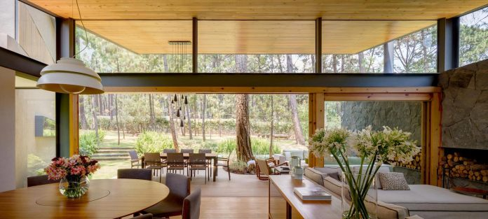 five-houses-project-dream-living-forest-dominated-ancient-pines-lush-vegetation-09
