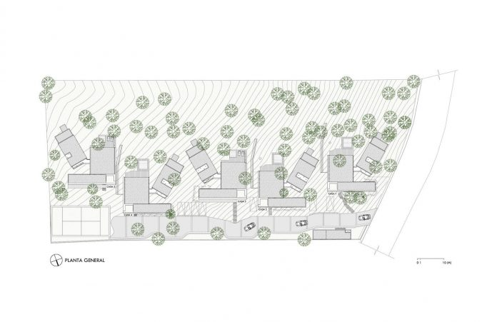 five-houses-project-dream-living-forest-dominated-ancient-pines-lush-vegetation-15