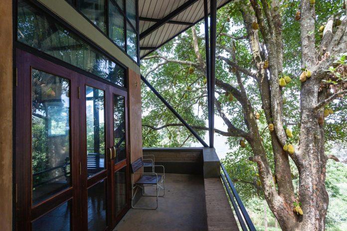 hornbill-house-located-oland-estate-tea-coffee-plantation-06