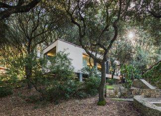 The House in the Woods: a simple orthogonal form of the house that fits perfectly into the oak forest