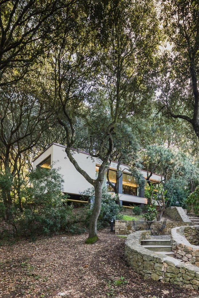 house-woods-simple-orthogonal-form-house-fits-perfectly-oak-forest-02