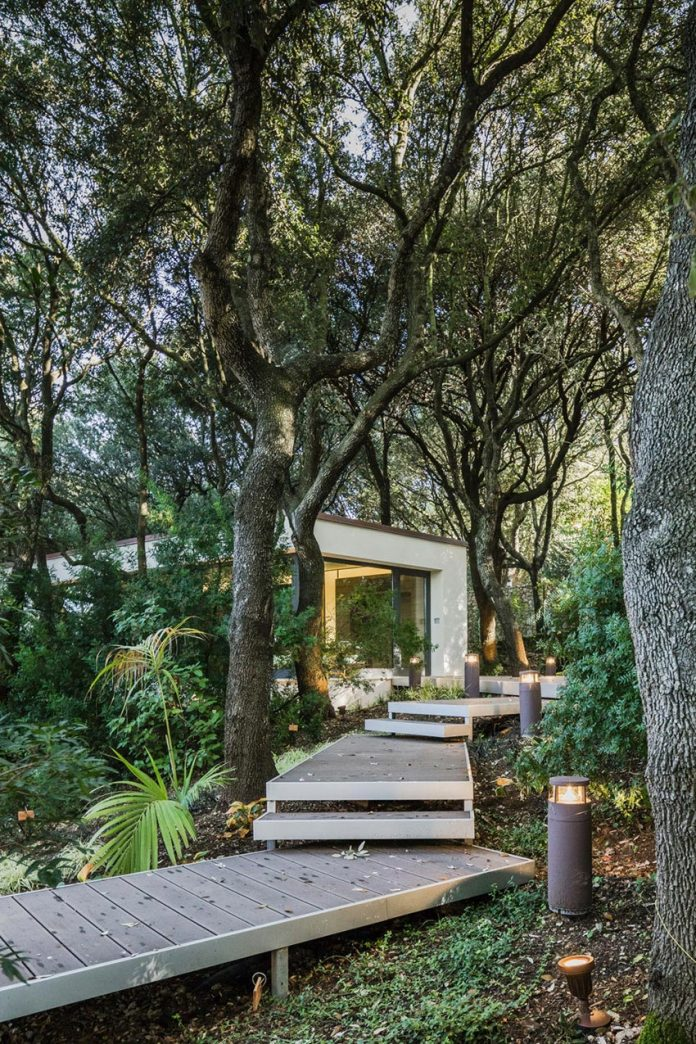 house-woods-simple-orthogonal-form-house-fits-perfectly-oak-forest-03