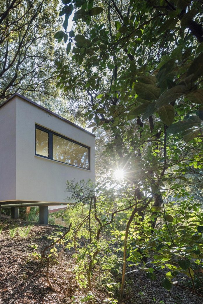 house-woods-simple-orthogonal-form-house-fits-perfectly-oak-forest-06