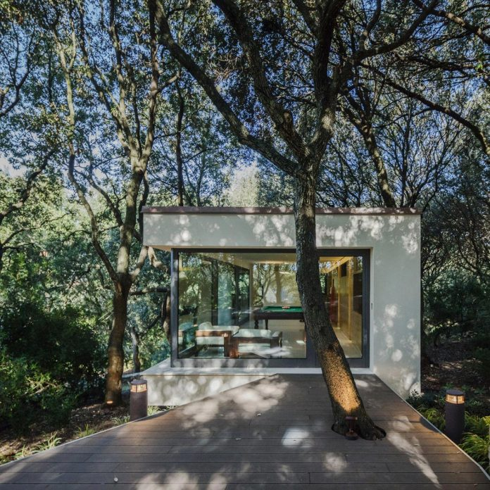 house-woods-simple-orthogonal-form-house-fits-perfectly-oak-forest-07
