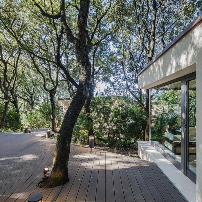 house-woods-simple-orthogonal-form-house-fits-perfectly-oak-forest-08