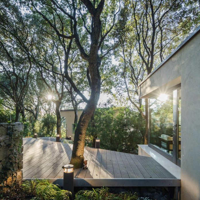 house-woods-simple-orthogonal-form-house-fits-perfectly-oak-forest-09
