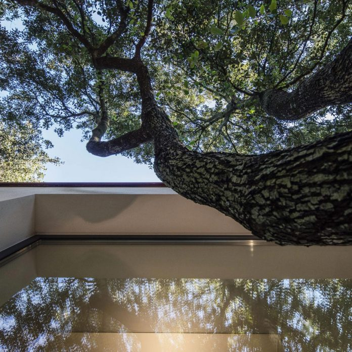 house-woods-simple-orthogonal-form-house-fits-perfectly-oak-forest-15