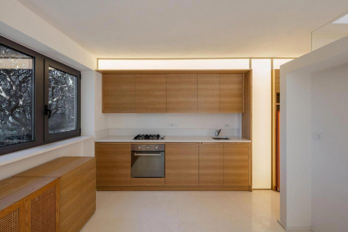 house-woods-simple-orthogonal-form-house-fits-perfectly-oak-forest-27