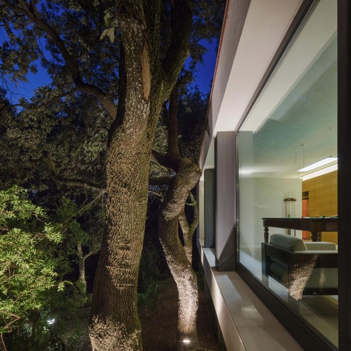house-woods-simple-orthogonal-form-house-fits-perfectly-oak-forest-32