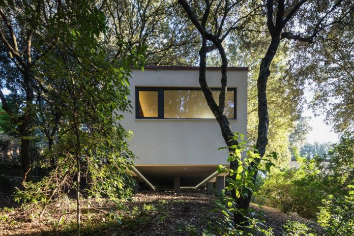 house-woods-simple-orthogonal-form-house-fits-perfectly-oak-forest-38