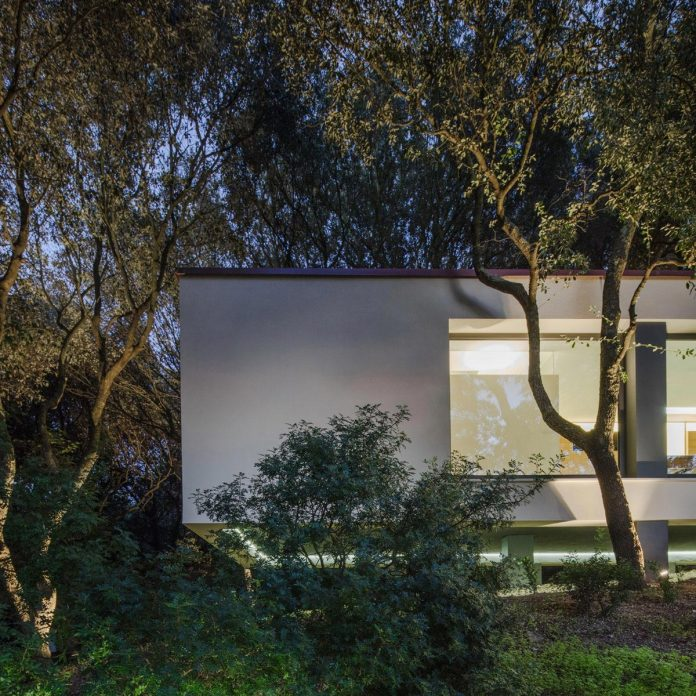 house-woods-simple-orthogonal-form-house-fits-perfectly-oak-forest-43