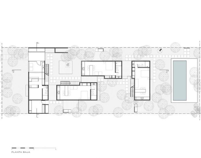las-gaviotas-set-residence-located-dense-young-poplar-plantation-300-meters-beach-17