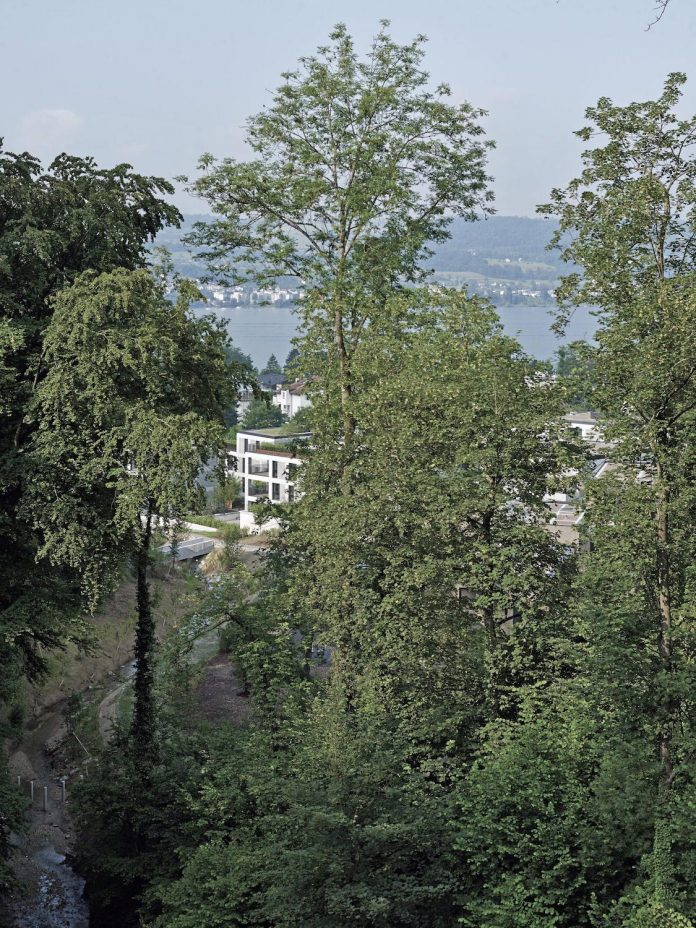 ten-contemporary-houses-34-freehold-flats-eight-commercial-units-built-near-lake-zurich-09