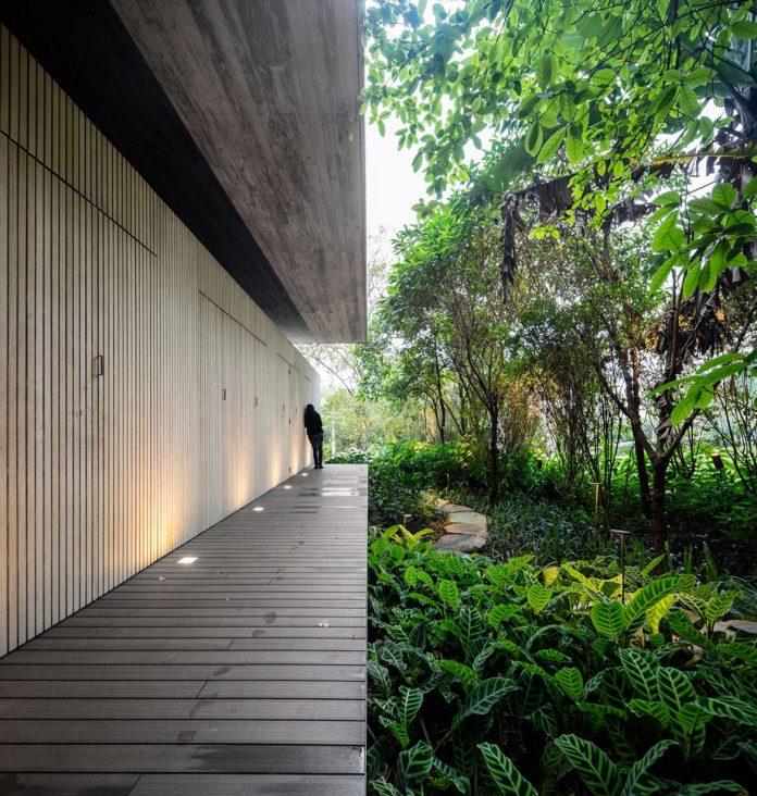 jungle-house-studiomk27-home-rain-forest-settled-mountainous-topography-dense-vegetation-07