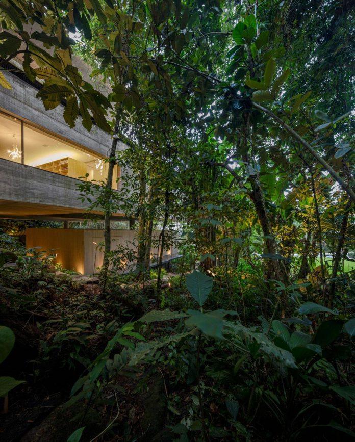 jungle-house-studiomk27-home-rain-forest-settled-mountainous-topography-dense-vegetation-41