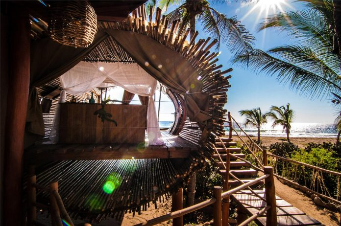 treehouse-suite-beachfront-bi-level-elliptical-shaped-bamboo-wrapped-treehouse-12