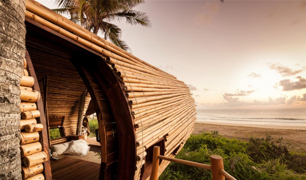 Treehouse Suite: beachfront bi-level elliptical shaped bamboo wrapped treehouse