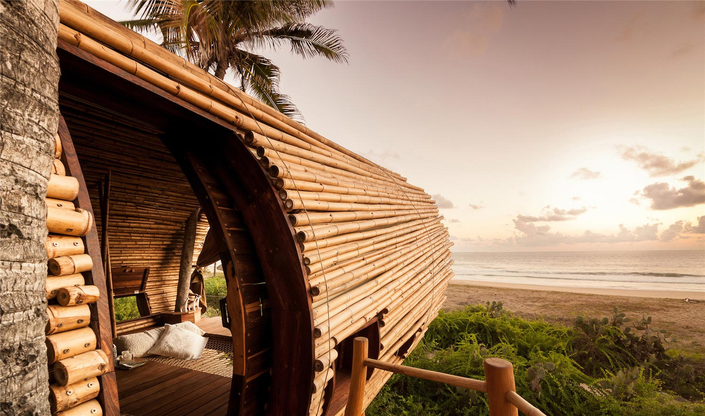Treehouse Suite Beachfront Bi Level Elliptical Shaped