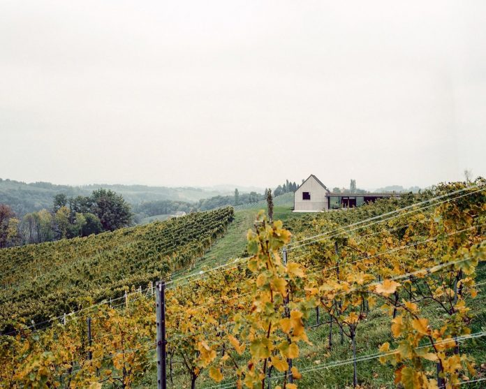 two-winegrowers-decided-make-old-vintners-house-retirement-home-01